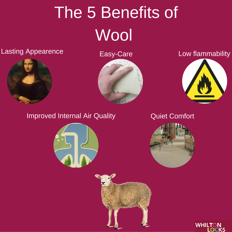 The 5 Benefits of Wool